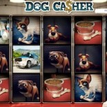 Dog Casher