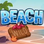 beach_sw