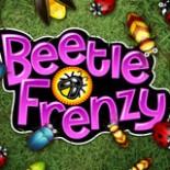 beetle_sw